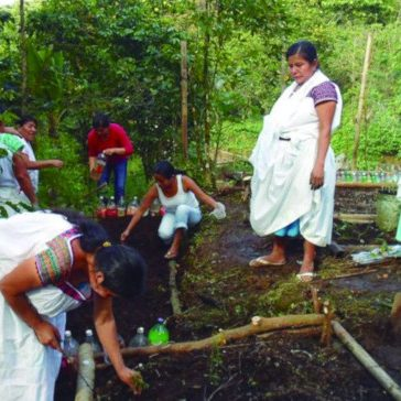 2018-09-13-Reconstruccion-Habitat-Proyecto-Global-Giving-COPEVI